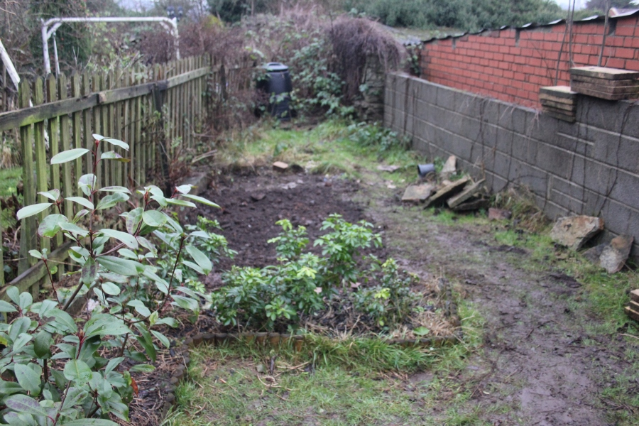 filling-pond-muddy-garden