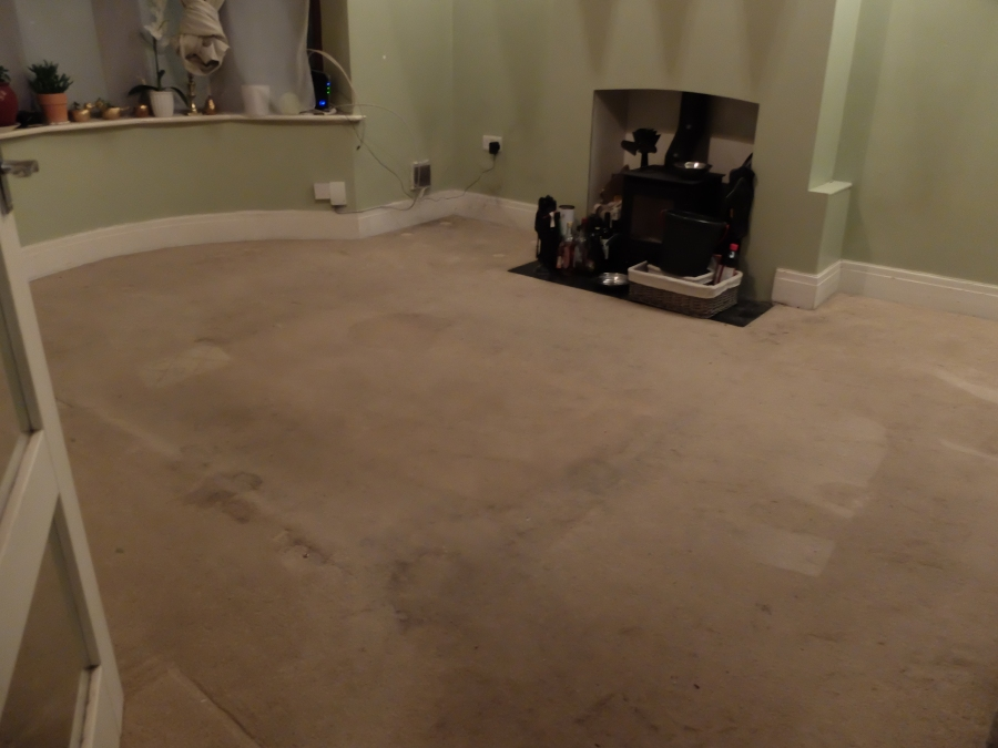 replacing front room carpet 1